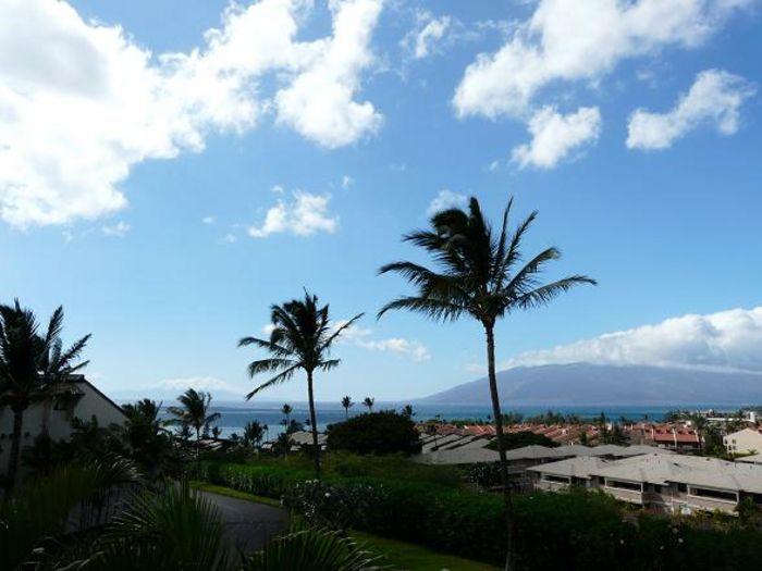 View Maui Kamaole L204  2b