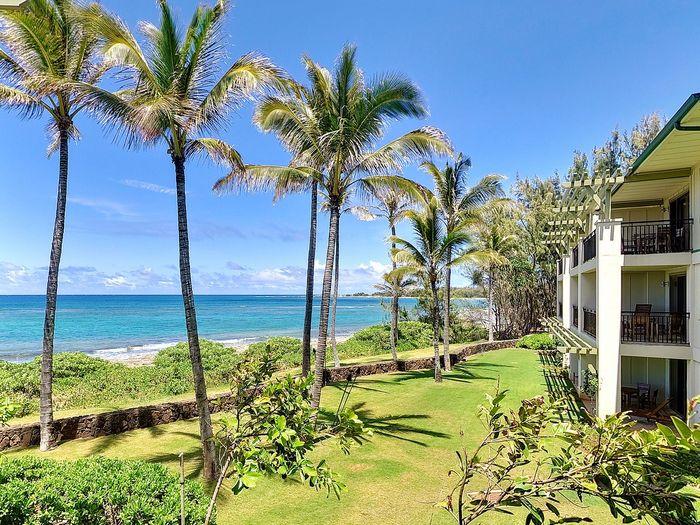 View 3 Bed Luxury Ocean Villa at Turtle