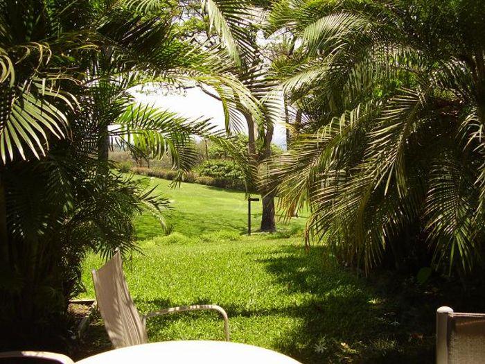 View Maui Kamaole G102  1b