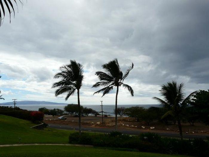 View Maui Kamaole H108  1b