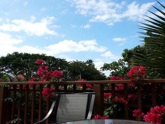 View Maui Kamaole C204  2b