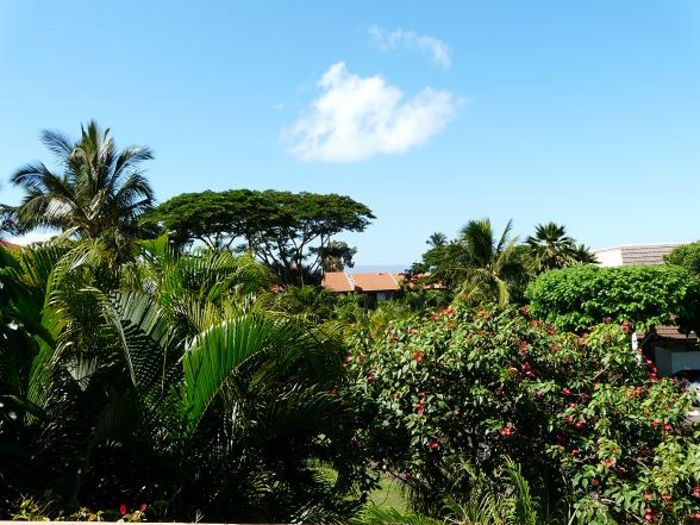 View Maui Kamaole D206  2b