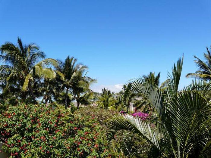 View Maui Kamaole K202  2b