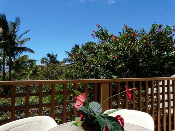 View Maui Kamaole K203  2b