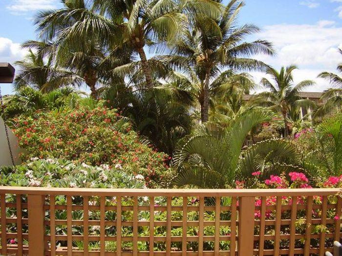 View Maui Kamaole K204  2b