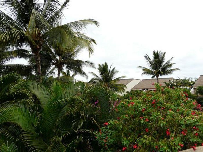 View Maui Kamaole K205  2b