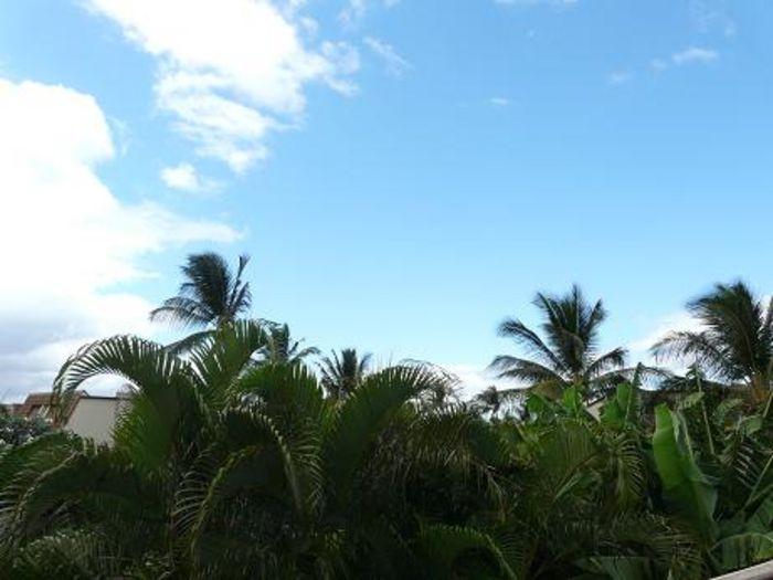 View Maui Kamaole K207  2b