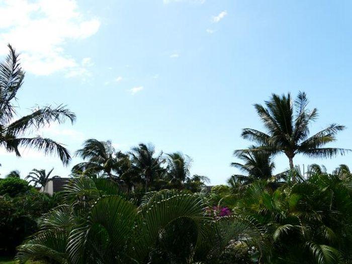 View Maui Kamaole M204  2b