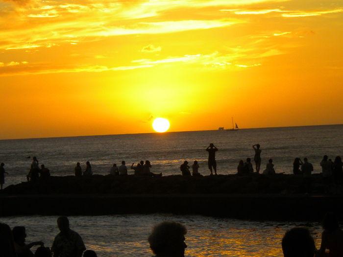 View Waikiki Skyliner
