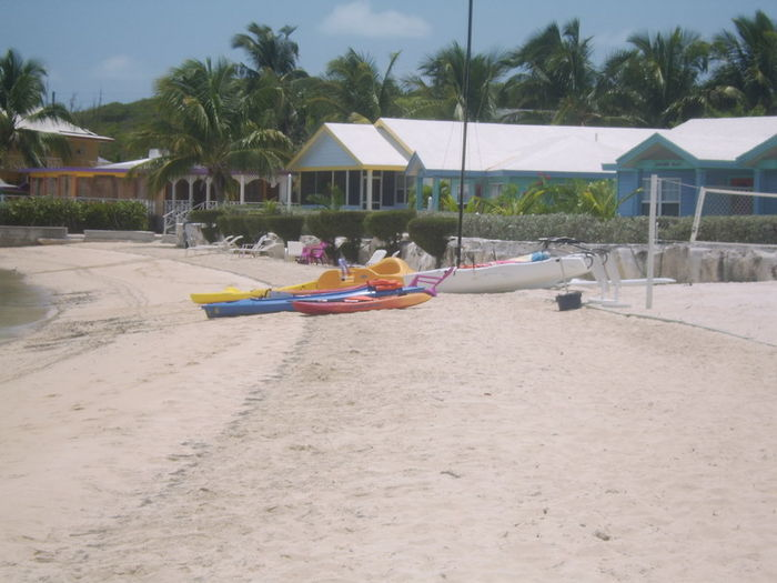 View Diamond Palm at Palm Bay Beach