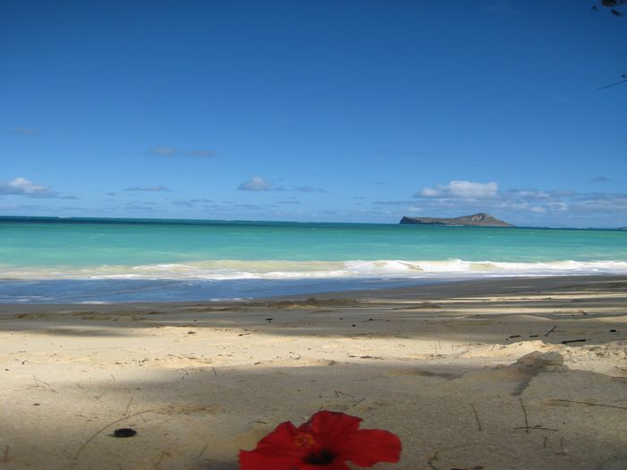 View Aloha Beach Vacation Rentals