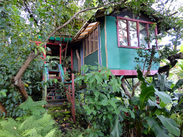 View Treehouses of Hawaii and BB