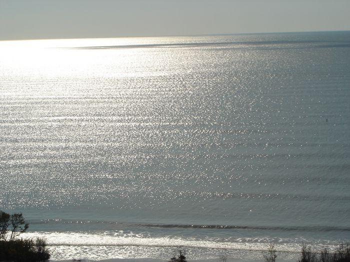 View Beachcombers Delight DIRECT GULF