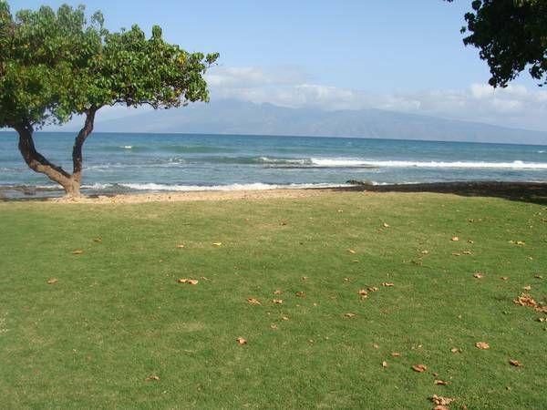 View Cozy Maui Condo near Kaanapali