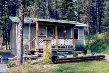 View Cheechako Cabins