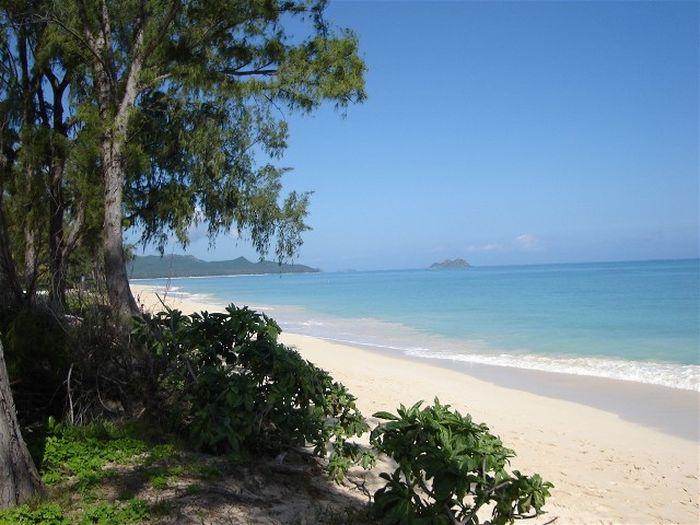 View Aloha Getaway Home