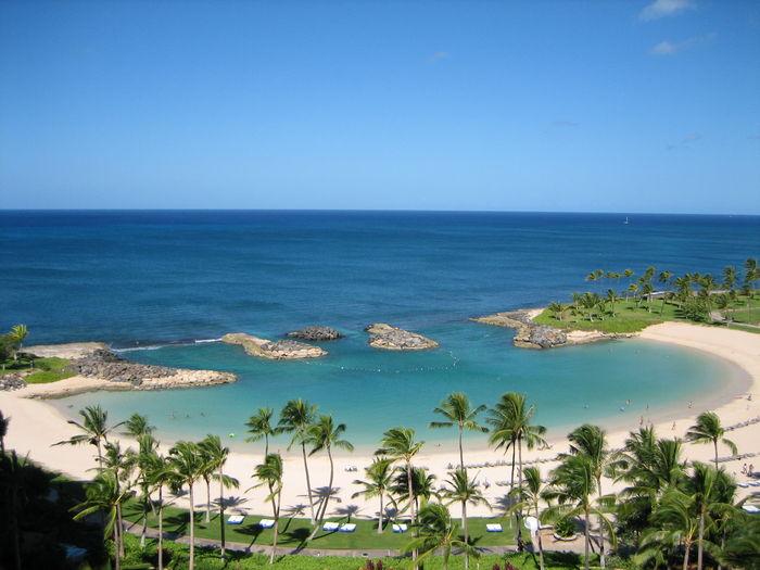 View Ko Olina Beach Resort Coconut