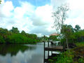 View Pet Friendly Saltwater Canal