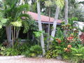 View RAINFOREST Cottage or Chalet
