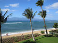 View Going Maui Oceanfront Vacation
