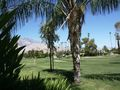 View Palm Springs Golf and Tennis Club